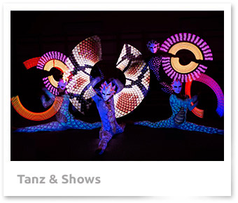 Tanz & Shows